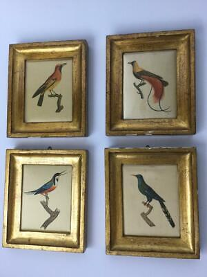 VTG Florentia Gold Tone Wood Framed Fabric Bird Picture Set of 4 Hand Made ITALY
