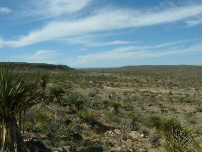 Only $148 A Month! 20+ Acres Land Must Liquidate Texas Land Bid On Down Payment!