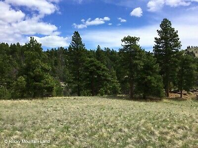 10 Acres Cascade County Montana Pine Trees Huge Meadow Views!