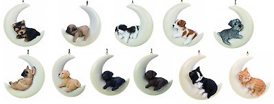 Vivid Arts - Hanging Moon Animal Decorations - Cats/Dogs - Garden/Home Ornaments