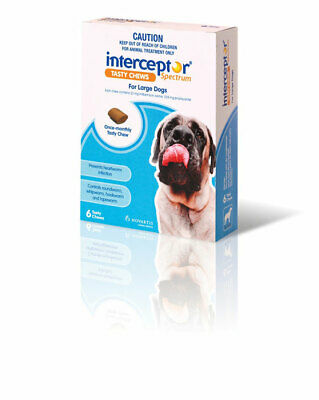 Interceptor Spectrum For Large Dogs Chews X 6