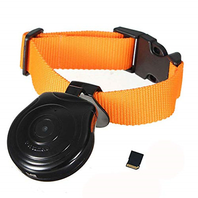 Digital Pet Collar 32GB Cam Camera DVR Video Recorder Monitor for Dog Cat Puppy