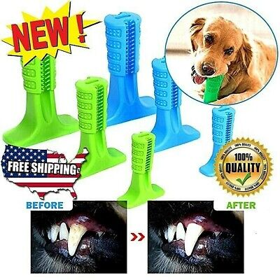 🔥 🐕🐶New Doggie DIY Toothbrush FREE-SHIPPING 🐶🐕 🔥