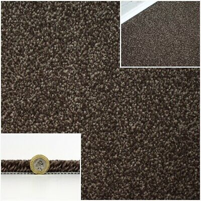 SOFT THICK Lounge/Bedroom Brown Saxony Carpet Action Back 4m Wide £8.99m²