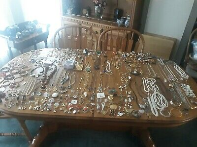 Huge 365 Piece Jewelry Lot Bracelets Necklaces Pins Cat Pins Animals Pins & More