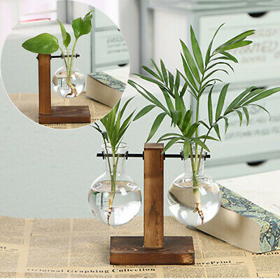 Tabletop Vintage Flower Pot Hydroponic Plant Vases Glass Vase Wooden Frame