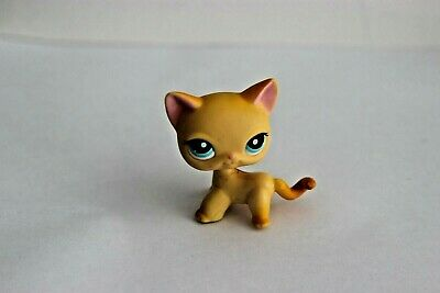 Petshop Lps Chat Europeen Cat Shorthair #339 Authentic Magnet Littlest Pet Shop