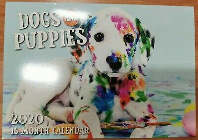 2020 Calender Wall Hanging 16 Month Calender Dogs and Puppies
