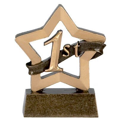 Personalised 1st place Trophy mini star. *Free Engraving*