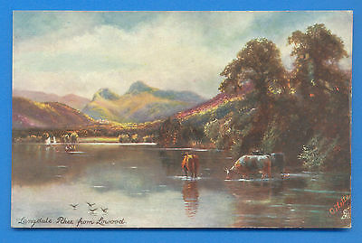 Langdale Pikes From Lowood.tucks Oilette Picturesque Lakes Postcard