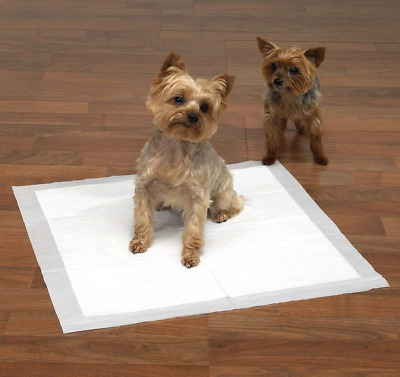 Spotted Brands Dog Puppy Training Pads Pad Wee Wee Floor Toilet Mats 33 x 45cm
