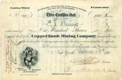 1881 Copper Knob Mining Co Stock Certificate