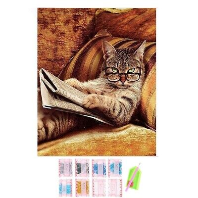 Glasses Cat Lying On The Sofa Reading Book,Diy Diamond Embroidery,5d,Cat,Di
