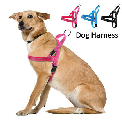 Adjustable Dog Harness Small Medium Large Car No Pull Handle Front Leading