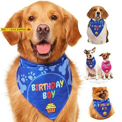 Odi Style Dog Bandana For Dog Birthday Party - Dog Birthday Bandana For Small, M