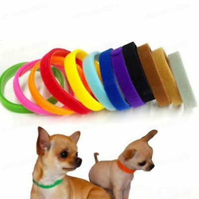 12 x Adjustable Nylon ID Collar Whelping Puppy Reusable Band Kitten Pet Dog Cat