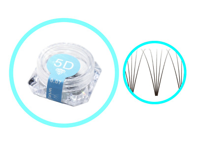 Pre-made Russian Volume Fan Lashes 5D WINK Mink Eyelash Extensions MAKE UP