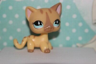 Authentique Petshop Chat Européen / Authentic Cat LPS 886
