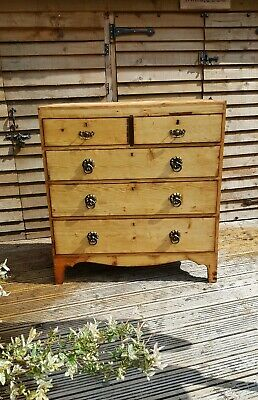 """Large 43""""high Scotch Pine antique Victorian Drawers Rustic Finish Solid & Grand"""