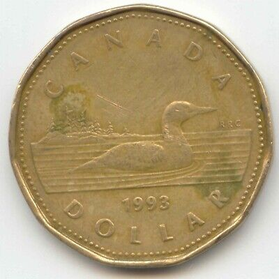 Canada 1993 Loonie Canadian One Dollar 1 $1 EXACT COIN SHOWN