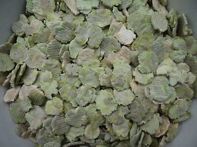 1Kg Micronized Flaked Dried Peas Small Animal Rabbit Poultry Food Fishing Bait