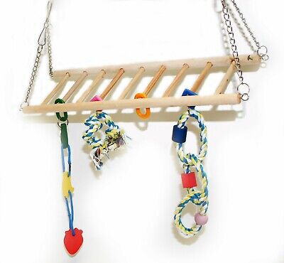 Crazy Climber Bridge/Ladder With Hanging Toys Bird And Small Animal Toy