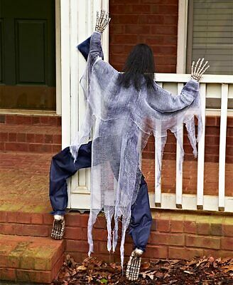 """White Climbing Zombie 63"""" Life Size Haunted House Prop Halloween Decoration"""