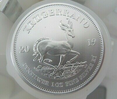 New 2019 Krugerrand Silver Bullion 25 coins Full Mint Tube 25x1oz 999 silver