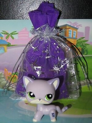 "Pet shop Chat Europeen * Petshop Shorthair Cat #2094 "" NEUF ""+ Sachet Cadeau"