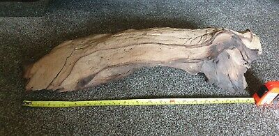 Large Piece of Natural Bog Wood for Aquariums, Fish Tanks, Vivarium 50cm