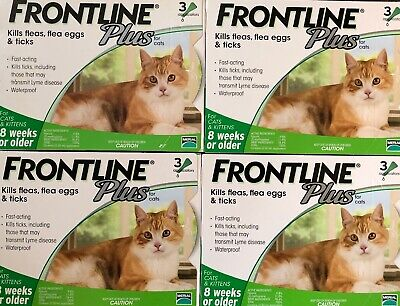 Genuine Frontline Plus For Cats 12 Doses / 12 Month Supply Flea & Tick Remedy