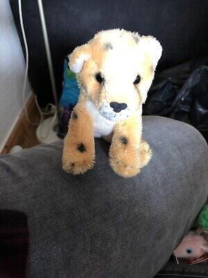 West Midlands Safari Park Mini Leopard Cuddly Toy