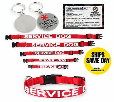 ALL ACCESS CANINE Service Dog - Emotional Support Animal Dog Collar and Tag XS L