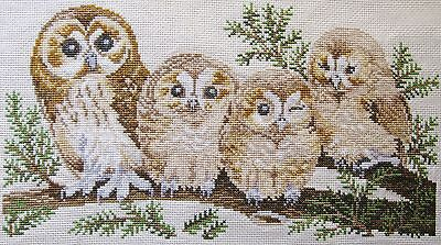 Cross Stitch Owls Completed Unframed H20cm x W35cm