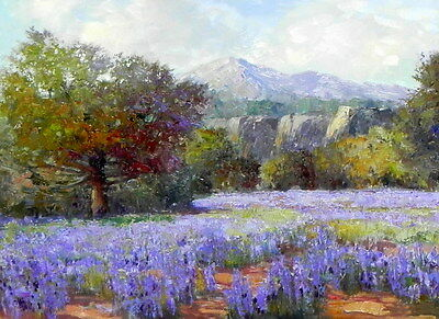 """Texas Bluebonnets Oil Painting Picture Printed on canvas 12""""x16"""" L158"""