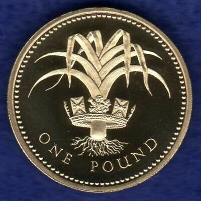 Great Britain, 1985 Proof £1, One Pound Coin, Welsh Leek (Ref. t2521)