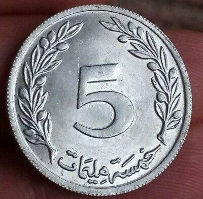 Tunisia 5 millim 1960  five qirsh olive tree middle east coin nearly UNC 280819