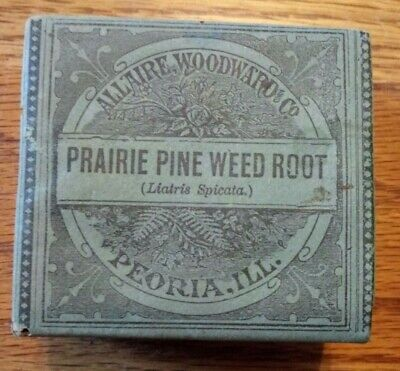 Prairie Pine Weed Root Holistic Medicine from early 1900's