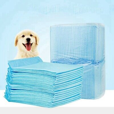 100 Large Puppy Training Trainer Pads Toilet Pee Wee Mats Dog Cat 46*33Cm