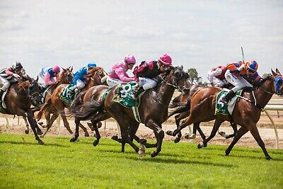 Horse racing betting system not betfair or trading