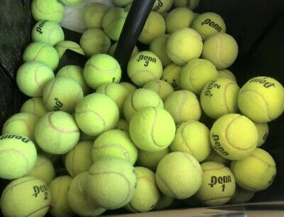 100 Used Mostly Penn TENNIS BALLS Serving Dogs toys dog play fetch walkers