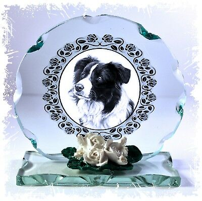 Border Collie Crystal round cut Glass plaque Collectable present CD10