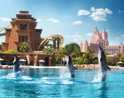 Dubai Entertainer 2020 Dolphin Bay At The Atlantis Hotel Dubai - Dolphin Snorkel