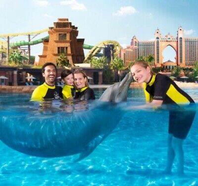 Dubai Entertainer 2020 Dolphin Bay At The Atlantis Hotel Dubai Dolphin Encounter