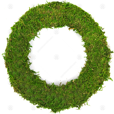 GardenersDream Padded Moss Effect Rings | Christmas Wreath Making Bases Frames