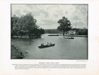 Connaught Water Epping Forest Chingford Antique Old Picture Print c1896 TQL#151