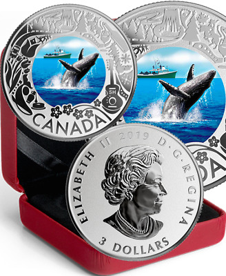 2019 Whale Watching $3 Pure Silver Proof Coin Canada Fun Festivities