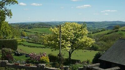 LATE DEAL - 5* Holiday Cottage with Hot Tub - Sleeps 4, 2 Bed, 2 Bath, Mid-Wales