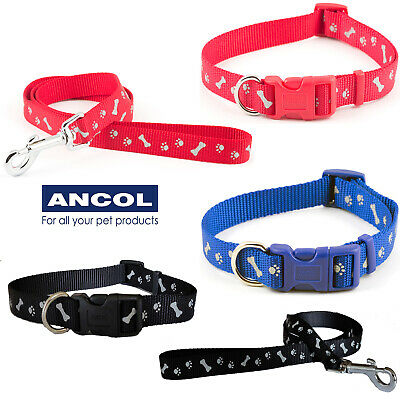 Ancol Paw N Bone Nylon Reflective Adjustable Dog Puppy Collar or Matching Lead
