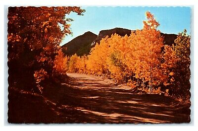 Postcard Autumn in the Rockies on Gold Camp Road near Cripple Creek CO 1970 A32